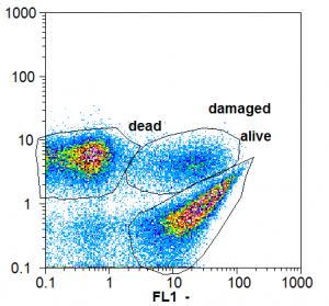 Évaluation de l'état physiologique des bactéries basée sur la cytométrie de flux.